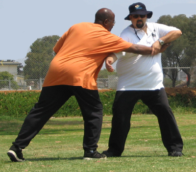 tai_chi_defense1