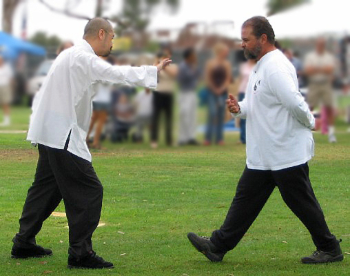 tai_chi_defense5